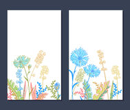 Field flowers. Set of vertical floral backgrounds with field flowers Stock Images