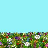 A field of flowers. Summer card. Vector illustration. Field with flowers and berries on a clear summer day. Vector illustration Stock Images