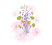Field flowers watercolor Royalty Free Stock Image