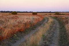 Field with a footpath at sunset Royalty Free Stock Photography