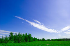 Field and forest conceptual image. Picture of green field and forest with blue sky in summer Royalty Free Stock Photos