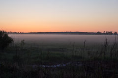 Field and forest in fog at sunset Royalty Free Stock Photo