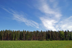 Field, Forest and Sky Landscape. A country landscape of field, forest and bright blue sky with some clouds on a sunny day of May. Photographed in Salo, Finland Stock Images