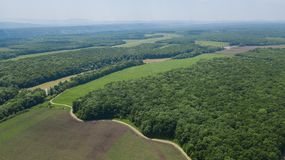 Field and forests in South Russian area in summer time royalty free stock photo
