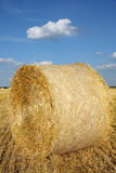 Field of freshly cut bales Stock Photos