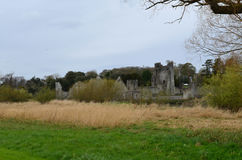 Field In Front of Desmond Castle Ruins in Ireland Stock Images