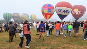 A field full of colorful hot air balloons on a misty day royalty free stock photo