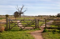 Field gate Stock Image