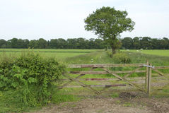 Field gate Stock Photography