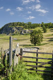 Field gate near Langcliffe Royalty Free Stock Image