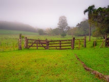 Field Gate. Gate with trees and fog - Lindolfo Collor - Brazil Royalty Free Stock Photography