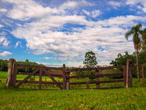 Field Gate. Gate with trees - Lindolfo Collor - Brazil Stock Image
