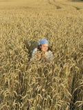 field girl Στοκ Εικόνα