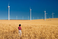 Field of Gold. Location: Oregon, USA young boy in a field of grain with power windmills in background Royalty Free Stock Images