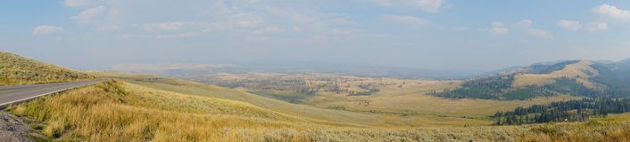 Field of Gold (Yellowstone National Park). Wide landscape of gold grass with a panorama view. Roadway vanishing point and a valley below in Yellowstone National Royalty Free Stock Images