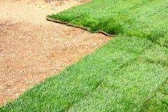 field grässod arkivfoto