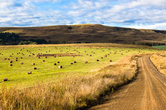 Grass Bales Dirt Road Farm Mountains Royalty Free Stock Image