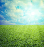 Field of grass,blue sky. Field of green grass and blue sky with clouds Stock Photography