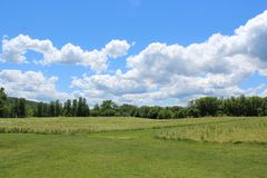 Field of grass, forest, hills and bright blue sky. Beautiful summer day in Ithaca, NY. Rural landscape in the summer with white clouds royalty free stock photos