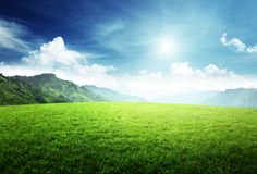 Field of grass in mountain Royalty Free Stock Photography