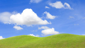 field of grass and perfect blue sky Royalty Free Stock Photos