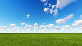 Field of grass and perfect sky. Field of grass and perfect blue sky Royalty Free Stock Images