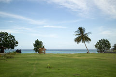 Field of grass and sea with soft sky Royalty Free Stock Photography