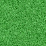 Field grass texture. Field fresh grass texture 3d Stock Photos