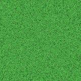 Field grass texture Stock Photos
