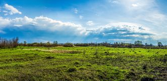 A field of grass under the shining clouds in the blue sky Royalty Free Stock Images