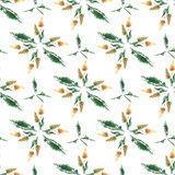 Field grass whisk watercolor seamless pattern. Field grass whisk watercolor on the white background  floral seamless pattern Stock Images