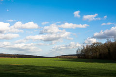 field green Royaltyfri Bild