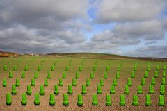 Green energy bulbs growing in a field Stock Photo