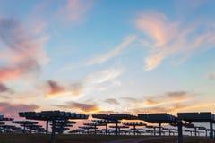 Field of Green Energy Photovoltaic Solar Panels Sunset or Sunris Stock Image