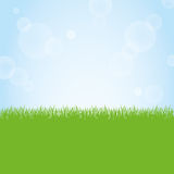 Field of green grass and blue sky background illustration. Green grass nature field and sunny blue sky background illustration Royalty Free Stock Images