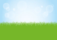 Field of green grass and blue sky background illustration. Green grass nature field and sunny blue sky background illustration Royalty Free Stock Photos