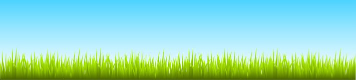 Field, green grass with blue sky - vector. Field, green grass with blue sky - stock vector Royalty Free Stock Photo