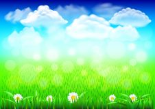 Field with green grass 3d realistic vector background. Sunny field with green grass 3d realistic vector background Royalty Free Stock Photo