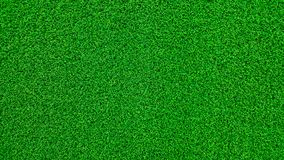 Field green grass and dew in the morning time and fresh air background, textures and wallpaper in the top view. Of position royalty free stock images