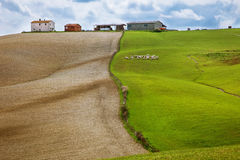 Field with green grass and field with land worked Royalty Free Stock Photos