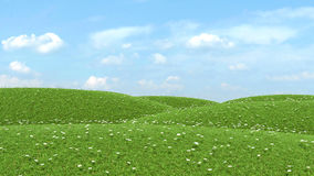 Field of green grass and sky.  Royalty Free Stock Photos