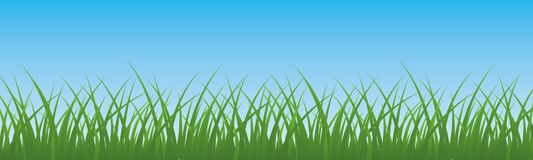 Field, green grass with sky background - vector. Field, green grass with sky background - stock vector Royalty Free Stock Photos
