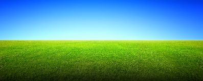 Field of green grass and sky. Field of green grass and beauttiful sky Stock Photo
