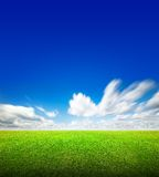 Field of green grass and sky Royalty Free Stock Photo
