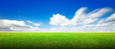 Field of green grass and sky. Field of green grass and beauttiful sky Royalty Free Stock Photo