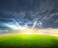 Field of green grass and sky Stock Photo