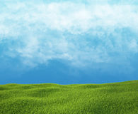 Field of green grass and sky with clouds. Stock Photo