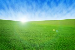 Field with green grass and sky with clouds. Clean, idyllic, beautiful summer landscape with sun. Field with green grass and sky with clouds. Clean, idyllic Royalty Free Stock Photography