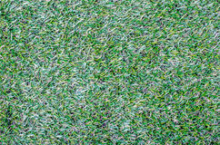 Field of  green grass texture as a background, top view, horizon Stock Images