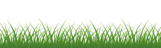 Field, green grass on white background - vector for stock. Field, green grass on white background - stock vector Stock Photography